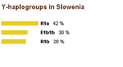 Y-haplogroups in Slovenia